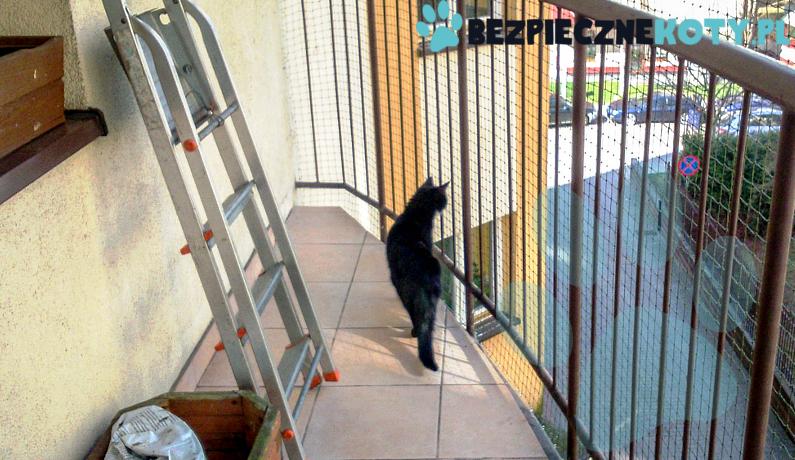 Siatka Na Balkon Dla Kota Wzmacniana Drucikiem Oko 30x30mm